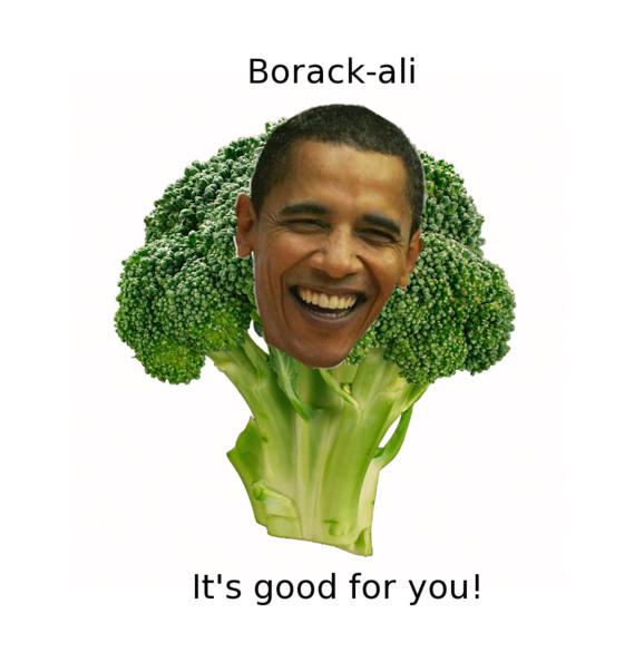 borackalli_2.png